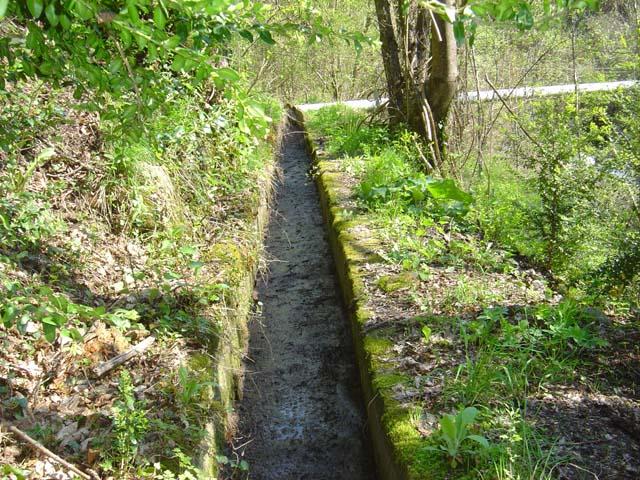 a s a canal superieur du veseou